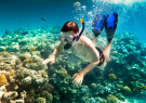 Scuba diving, snorkeling in sea travel in Da Nang